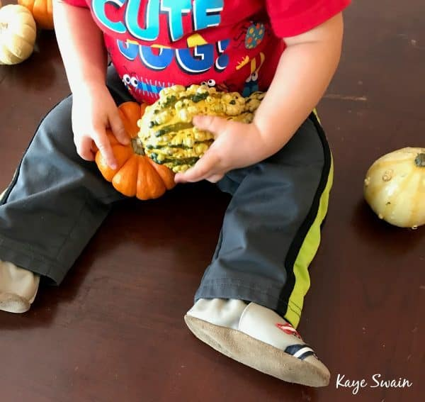 Halloween Fun Stuff and squash activities in Roseville California