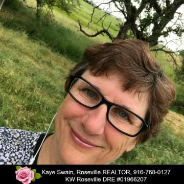 Kaye Swain Roseville Real Estate Agent Roseville California