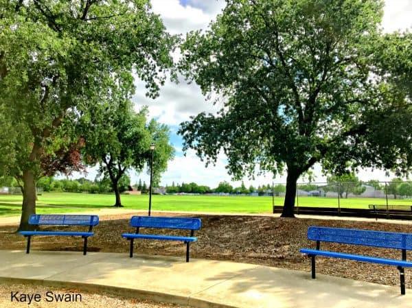 Kaye Swain Roseville Real Estate Agent sharing Olympus Park soccer and softball fields in East Roseville