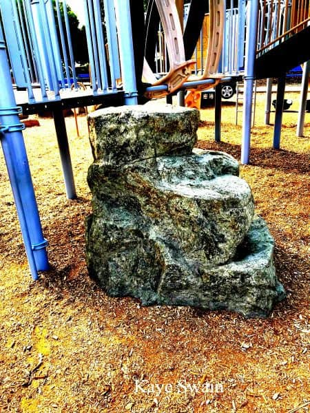 Kaye Swain Sun City Roseville CA Real estate agent sharing cool rock to climb at Olympus Park