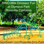 Kaye Swain sharing Cool Dinosaur climbing jungle gym at Pinterest AND Roseville California Joys