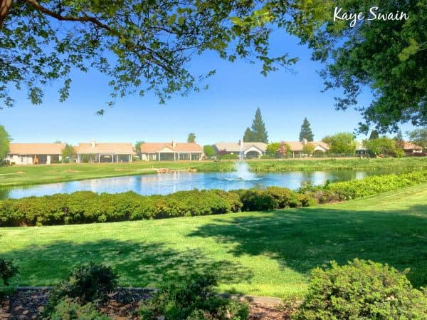 Roseville Real Estate Agent Kaye Swain sharing Sun City Roseville homes for sale