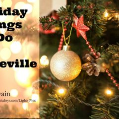 Holiday things to do in Roseville CA from Kaye Swain Roseville REALTOR 1200 800