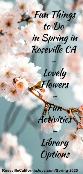 Fun Spring Things to Do in Roseville CA