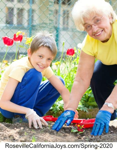 Gardening with grandkids fun spring things do Roseville CA wm