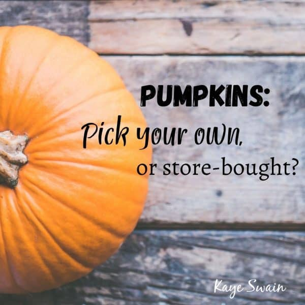 Roseville REALTOR Kaye Swain shares pumpkin patch and more resources for fun things to do near Roseville CA